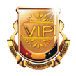 VIP CONNECTION
